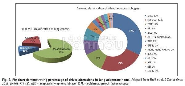 肺癌基因检测首检1代靶向药可以吃,为什么耐药后二检3代却不能用?